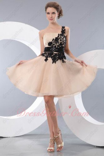 Left One Shoulder Hollow Out Venice Lace Champagne Organza Prom Event Dress Short