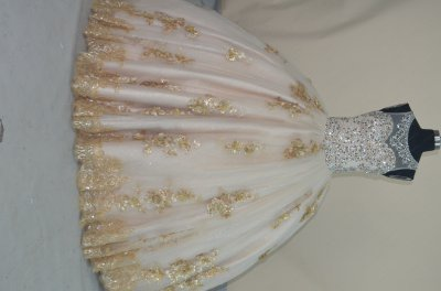 Designer Same Style Scoop Full Beading Bodice 3D Applique Quince Ball Gown Champagne