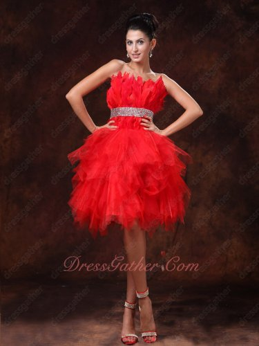 Brisk Strapless Plume Bodice Fluffy Red Birthday Party Dress Designer Recommend