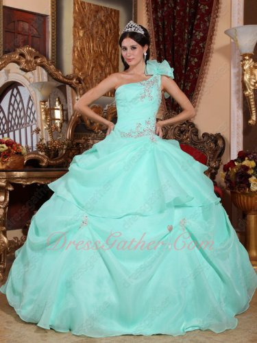 One Shoulder Apple Green Thick Organza Puffy Quinceanera Ball Gown and Her Court