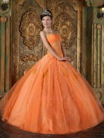Pin-tucks Bust Orange Organza Flat Slit Skit Best Quinceanera Dress With Slip Puffy