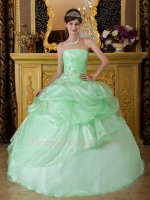 Lovely Pale Apple Green Organza Quinceanera Theme Dress Drinking Party