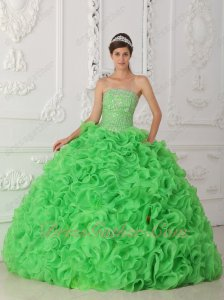 Spring Green Curly Thick-Organza Ruffles Puffy Quince Ball Gown Silver Details