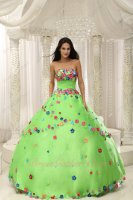 Spring Green Mesh Intersperse Motley/Varicolored Handwork Florets Quince Ball Gown