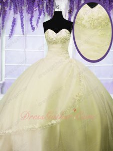 Shallowest Yellow Daffodil Flat Mesh Girl's 15 Birthday Ball Gown Lacework Hemline
