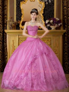 Deep Lilac Fashion Icon Embroidery Quinceanera Sweet 16 Ball Gown New Jersey