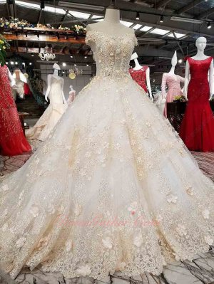 Off Shoulder Champagne 3D Flowers Cathedral Train Wedding Bridal Gowns Extravagant