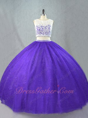 Two Pieces Suit Show Waist Blue Violet Pansy Plain Quinceanera Ball Gown Leisure