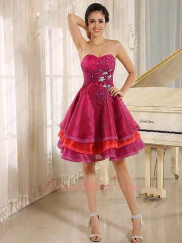 Applique Fuchsia and Red Commutative Layers Mature Lady Short Formal Prom Dress Bustle