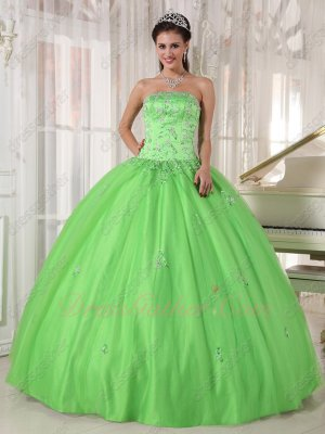 Spring Green Lady Military Gathering Evening Ball Gown Flowing Layers Tulle