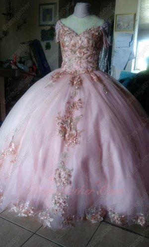 Sample Products Exhibition Luxurious 3D Flowers Blush 2020 Quinceanera Ball Gown Pretty
