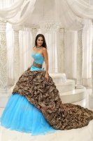 V-Shaped Cut Out Basque Leopard Bubble Overlay Chapel Train Aqua Quince Ball Gown