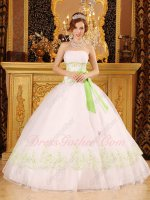 Princess White Mesh Tulle Quinceanera Ball Gown With Spring Green Embroidery
