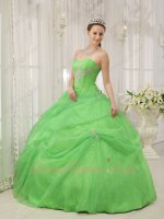 Pretty Quinceanera Gown Made By Spring Green Organza Skirt With Overlay