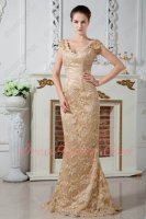 Older Women Cap Sleeves V Collar Champagne Lace Formal Occasion Dress Applicable