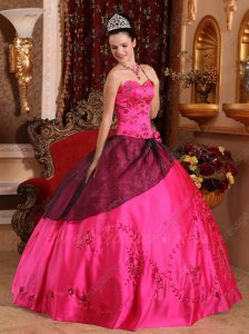 Classical Fuchsia Embroidery 16th Girls Ball Gown Black Organza Flat Overlay