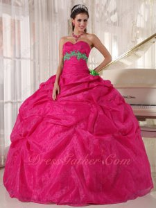Spring Green Flower Decorate Fuchsia Quinceanera Girls Ball Gown Pageant