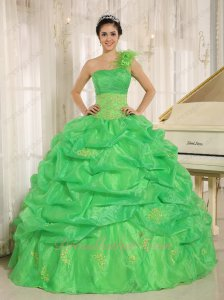 Spring Grass Green Puff Bluging Organza Quinceanera Dress Right Shoulder Single Strap