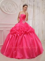 Rolled Flabellum Flowers Decorate Top Designer Quinceanera Hot Pink Shiny Organza