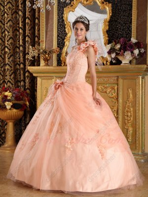 Light Peach Mesh Puffy Quinceanera Gown Single Shoulder With Feather
