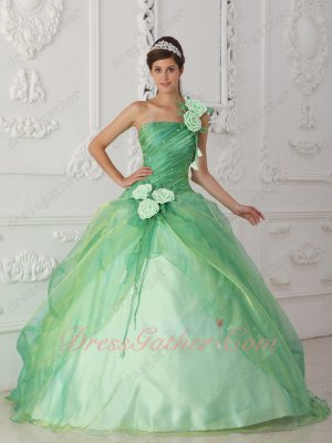 Bichromatic Apple Green Organza Prom Gown Strap With Handwork 3D Rose Flowers