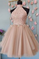 High Neck Open Back Pale Mauve Cameo Tulle Homecoming Dress With Vintage Lace