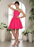 Vivacious Floret Distribute Hot Pink Mini Graduation Ceremony Dress New Trend